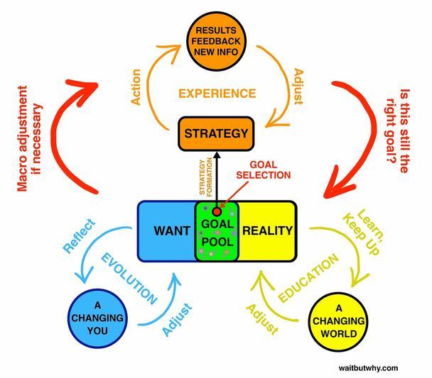 Область целей — место перекрытия полей желания и реальности, так что собственная форма и содержание этой области зависят от состояния данных полей