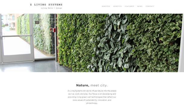 «Живые системы Z» — природа знакомится с городом