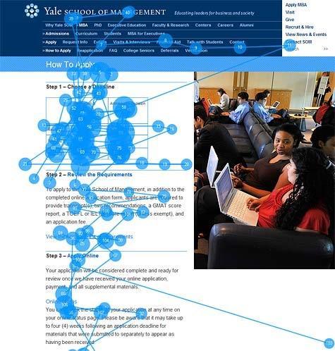 Айтреккинговое исследование Nielson Norman Group: сайт Йельской школы менеджмента