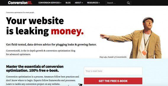 Пип Лайа как бы случайно указывает на фразу: «Деньги утекают с вашего сайта»