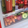 Amica FKR29653R Static Fridge Freezer