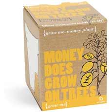 Grow Me - Money Does Grow on Trees