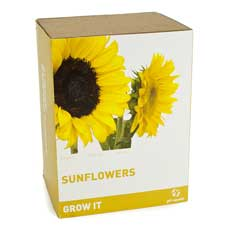 Grow it - Sunflowers