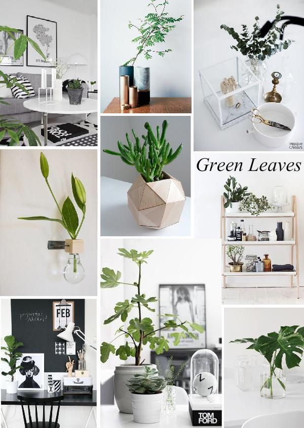 Trend Alert / Green Leaves