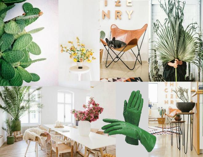 Nature inspired interiors