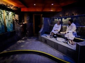 Mothers Day Spa Specials, Soul Spa at the Osprey Co. Kildare