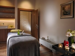 Elemis Exotic Lime and Ginger Scrub with Facial, The Spa at Castleknock Hotel Co. Dublin