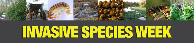 Invasive Species Week banner