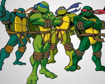 test-tortujas-ninjas