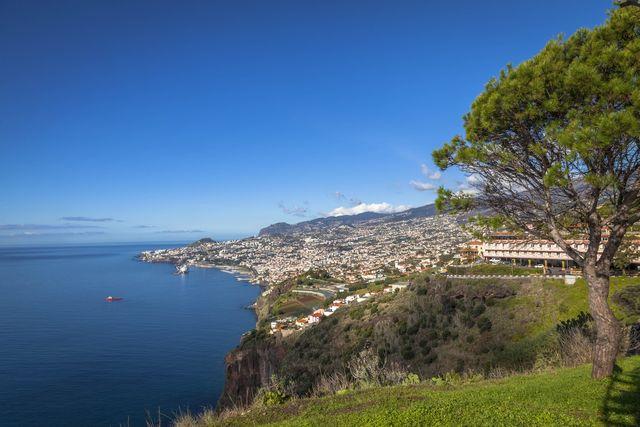 Uitzicht Funchal