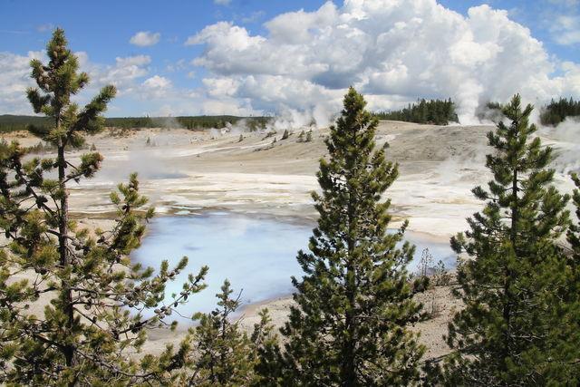 Norris Geyser, Yellowstone