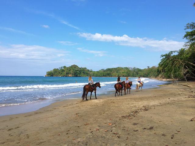 Paardrijden aan de kust in Costa Rica