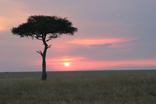 Zonsondergang in de Masai Mara