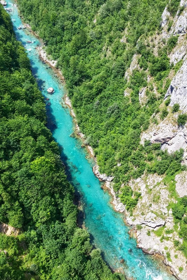 Tara River in Durmitor National Park