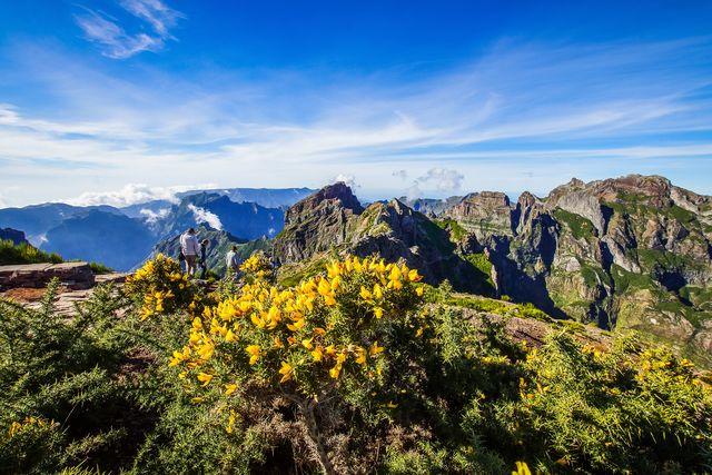 Berg en bloemen