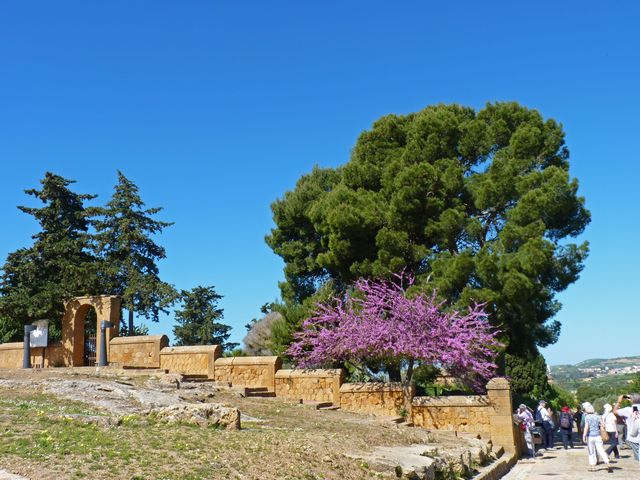 Vallei van de Tempels, Agrigento