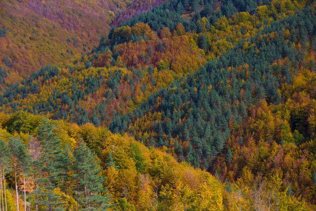 Aragonese Pyreneeën