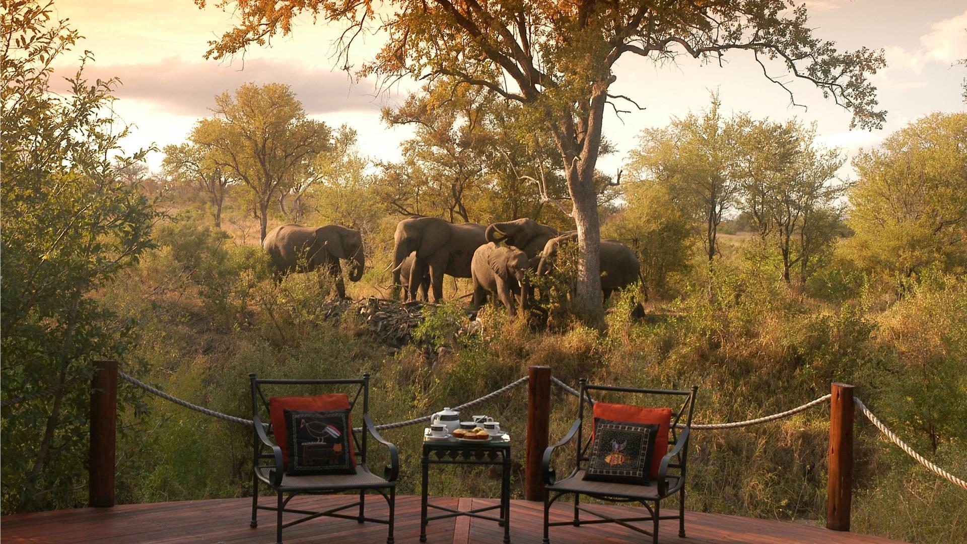 Hoyo Hoyo Safari Lodge in het Krugerpark