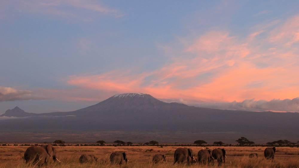 Zonsondergang voor de Kilimanjaro in het Amboseli National Park