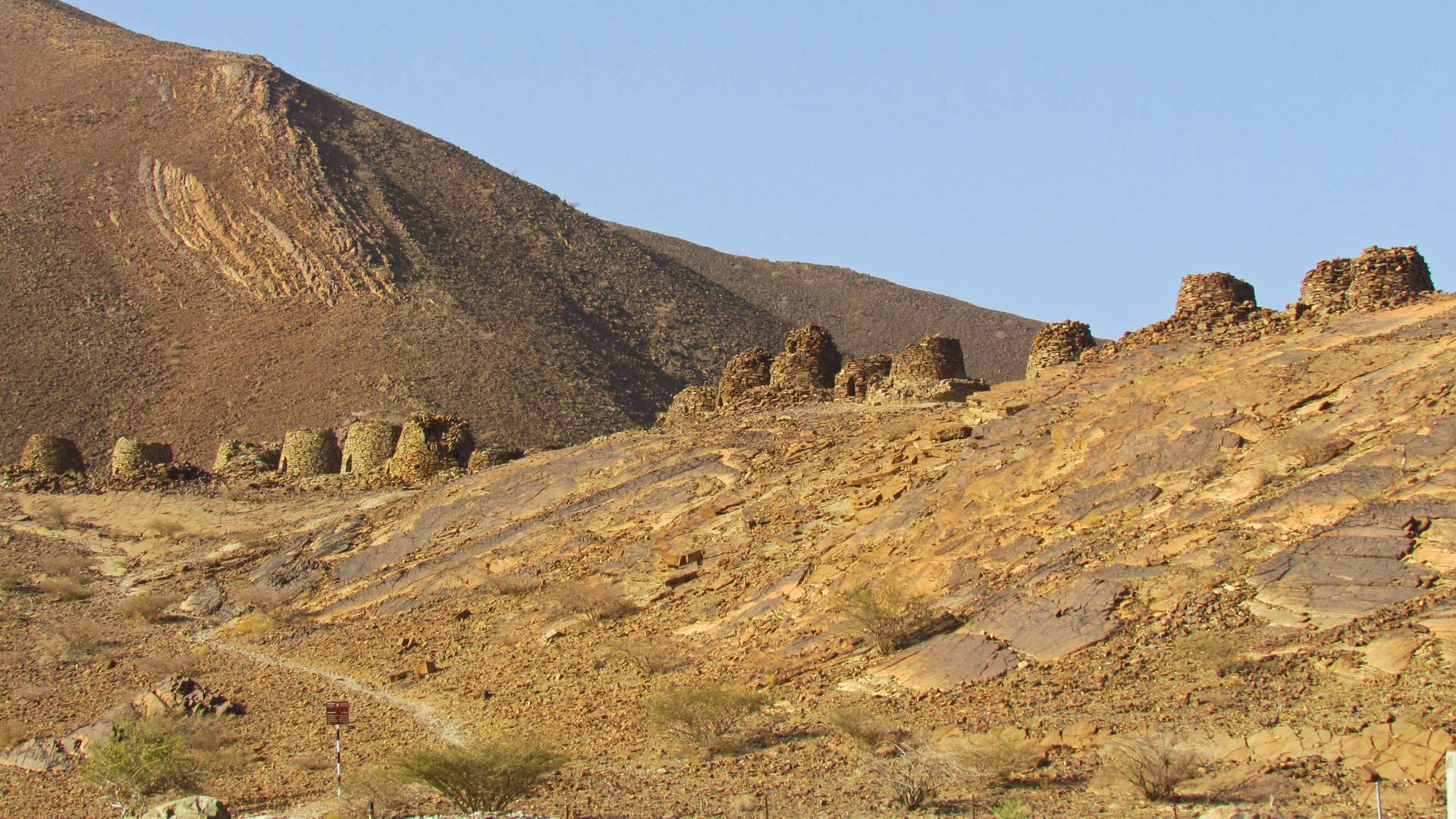 De 'beehive tombs' in Al Ayn