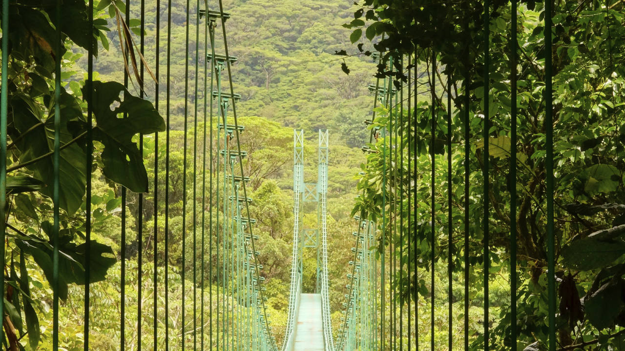 Hangbrug Monteverde