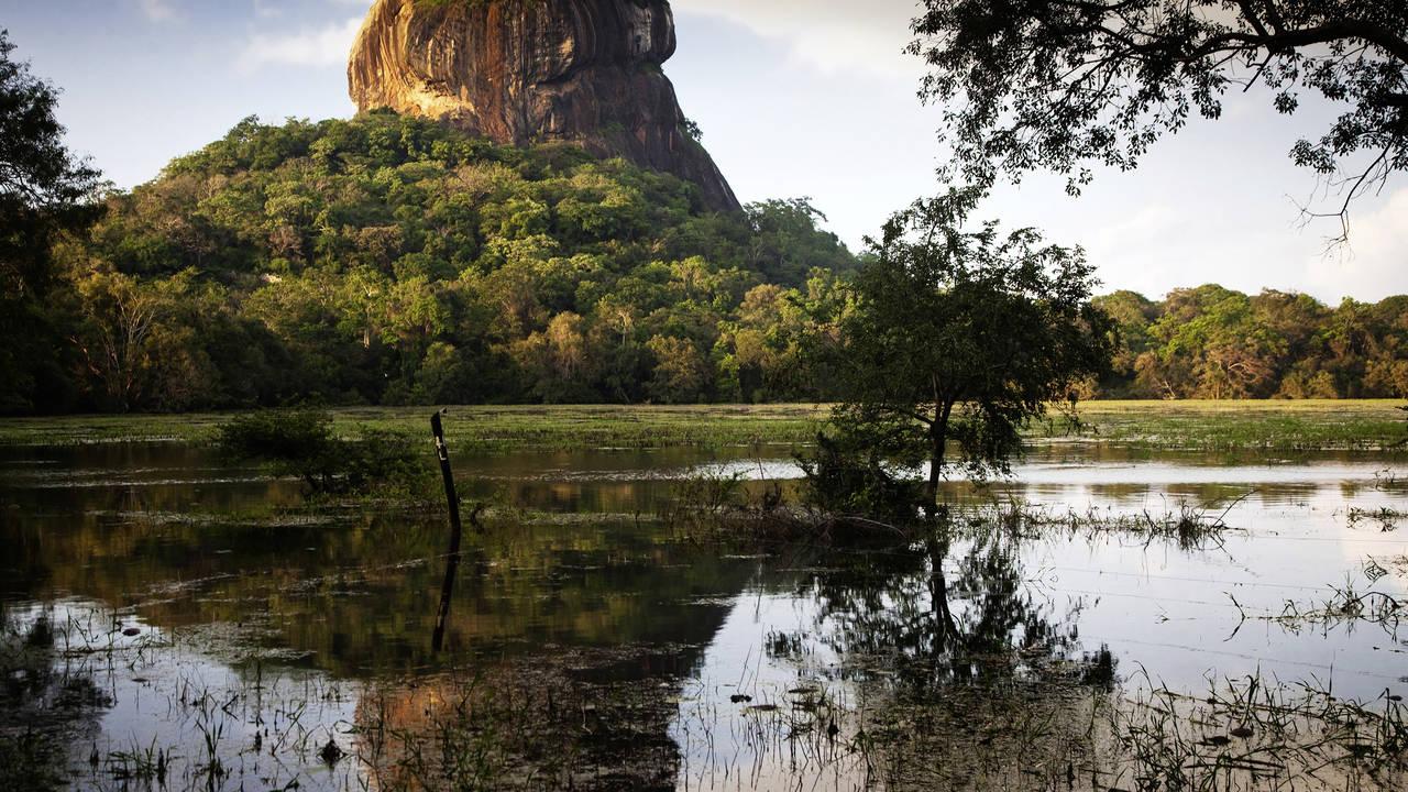 Sfeerimpressie Best of Sri Lanka