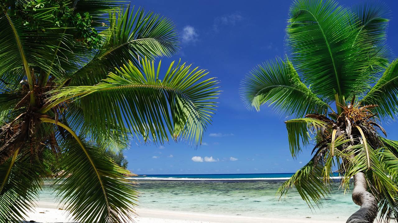 Tropisch Seychellen