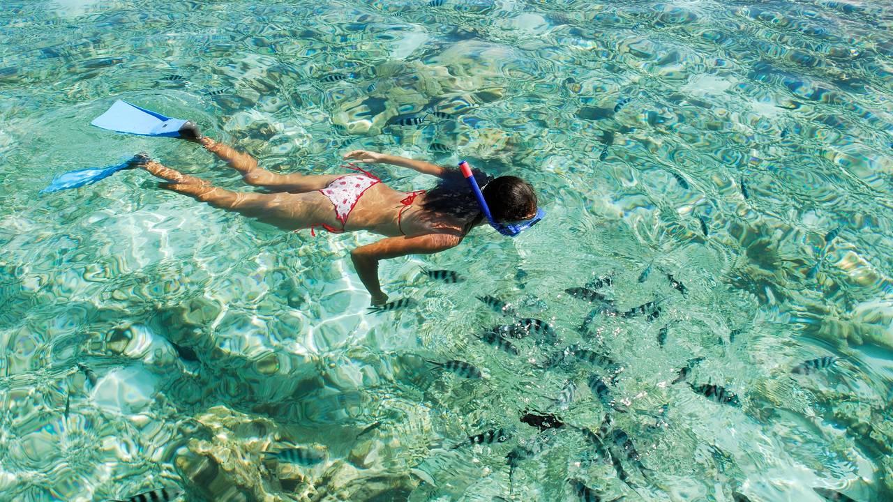 Snorkelen in de Seychellen