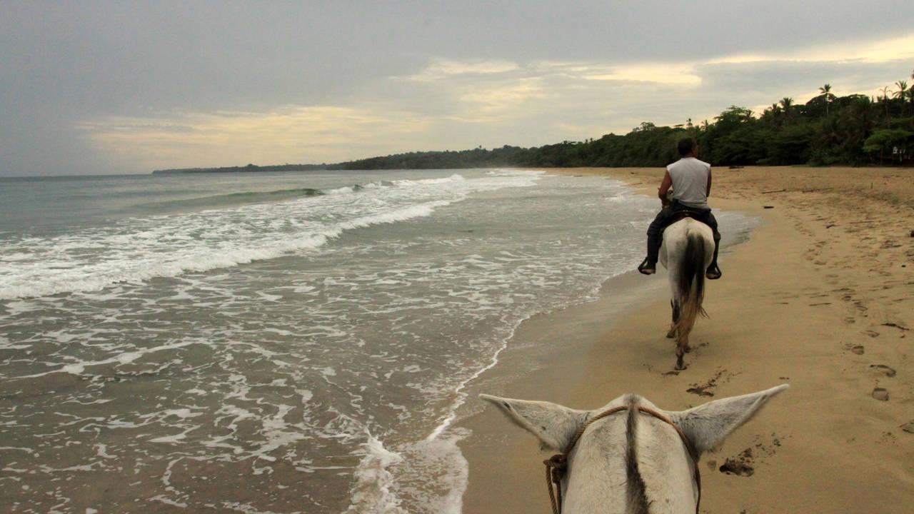Paardrijden in Puerto Viejo