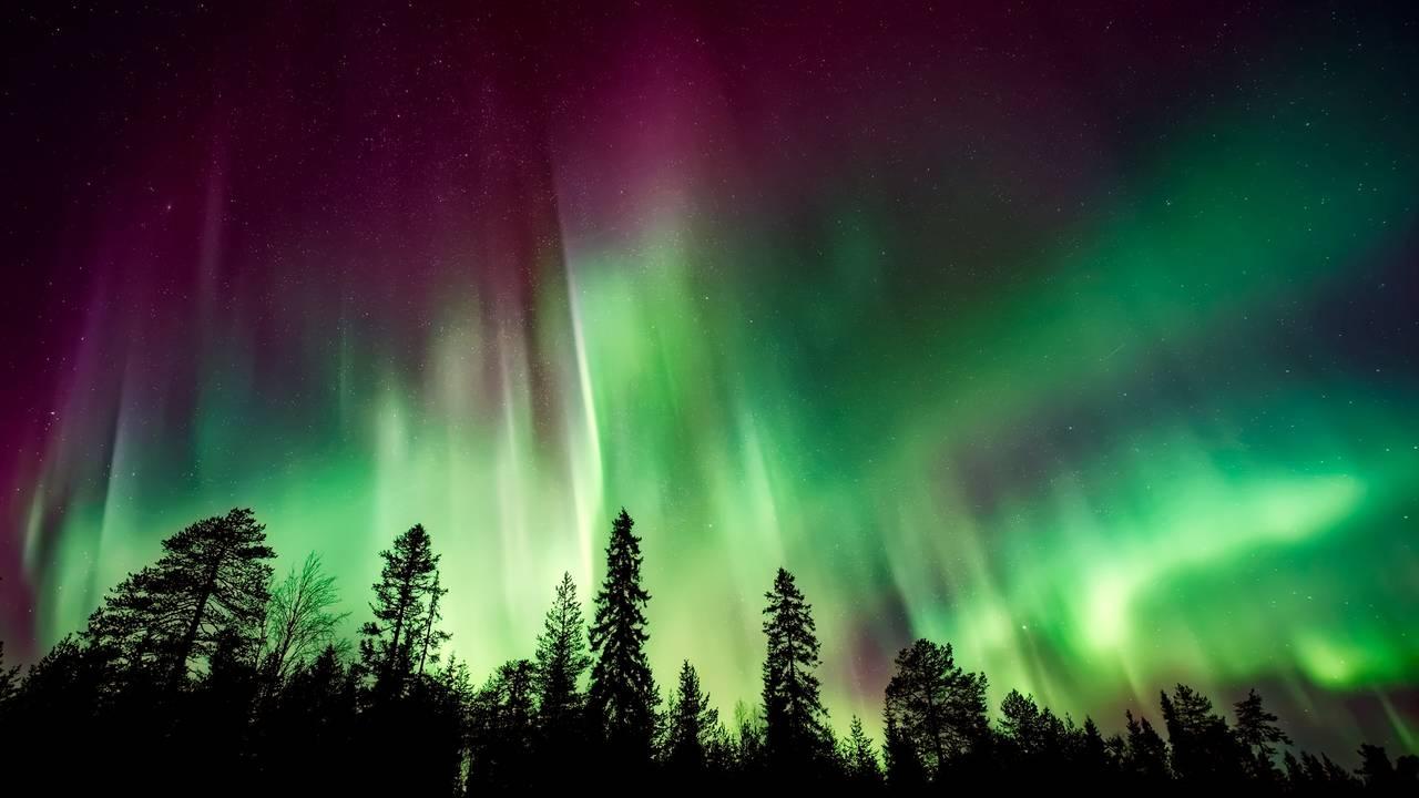 Sfeerimpressie Best of Finnish Lapland