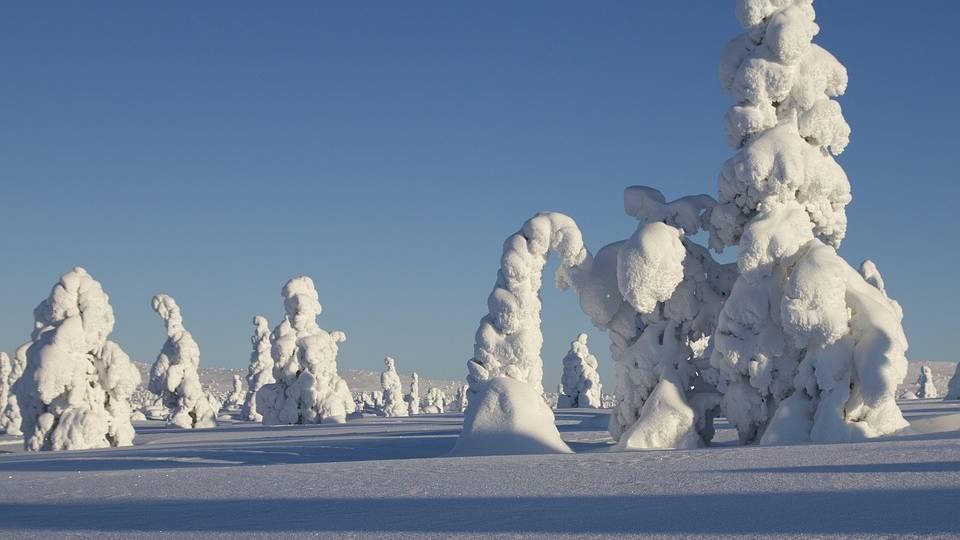 Winters beeld, Fins Lapland