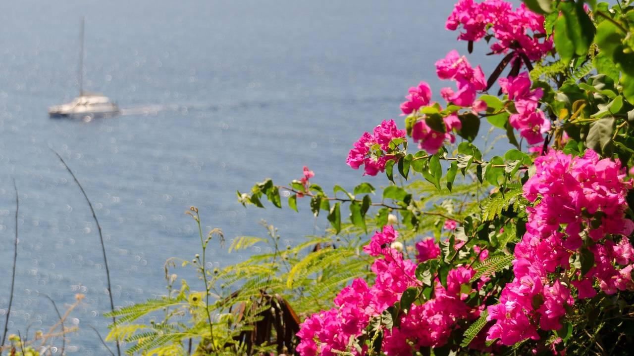 Kustlijn op Funchal