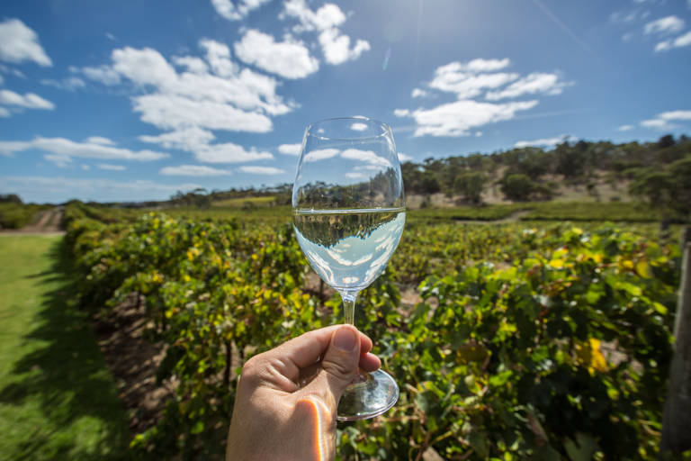 Wijn in Zuid Australië