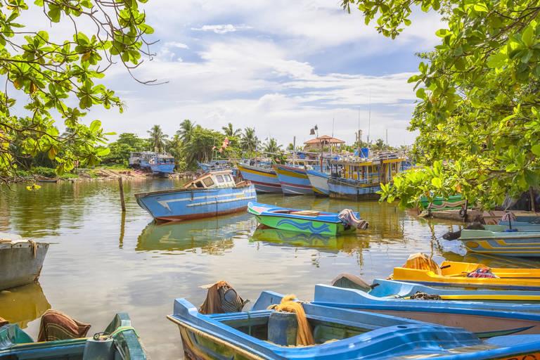 Boten in Negombo
