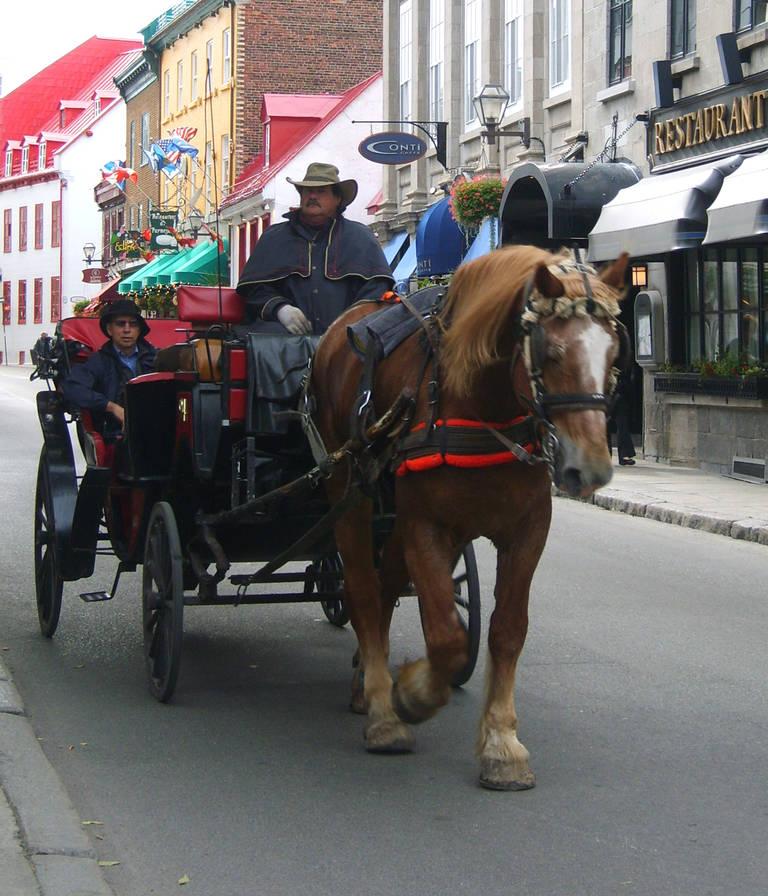 Rit per koets, Quebec City
