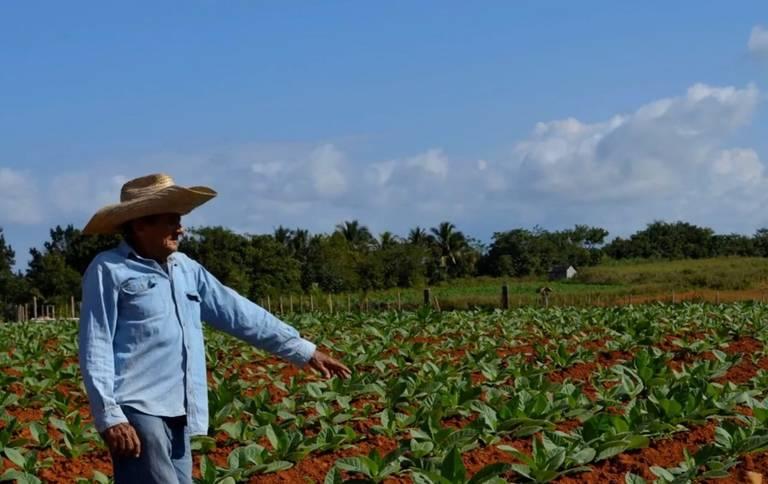 Boerderij in Vinales
