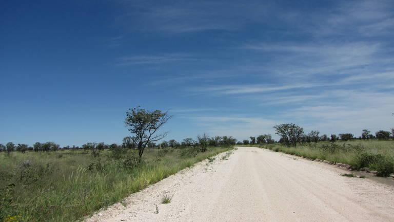 Onderweg in Etosha National Park