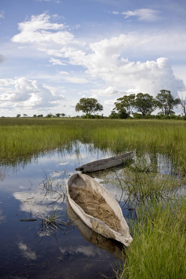 Een mokoro boot in de Okavango Delta