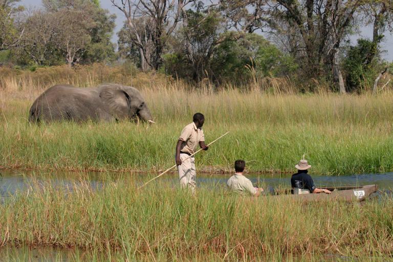 Varen en wild spotten in Okavango Delta