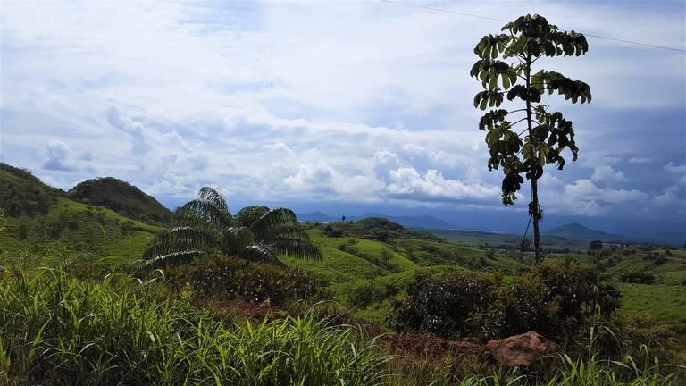 Landschap op schiereiland Azuero
