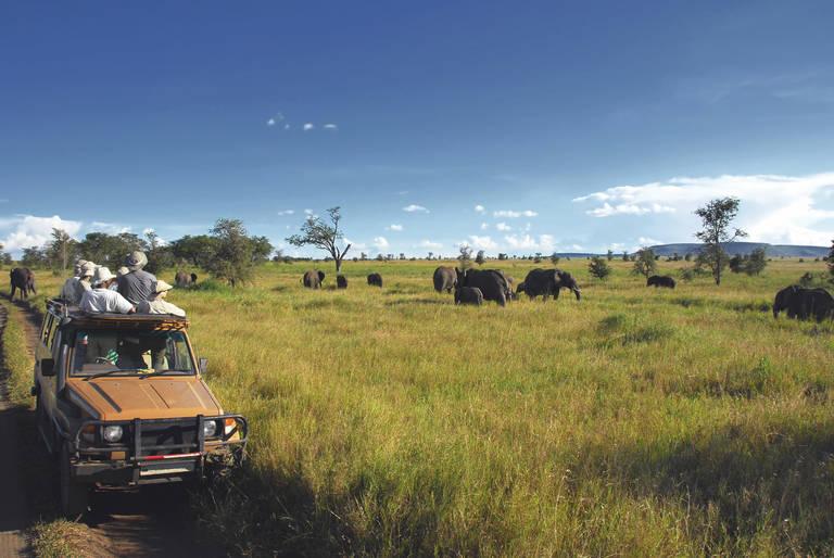 Op safari in Serengeti National Park