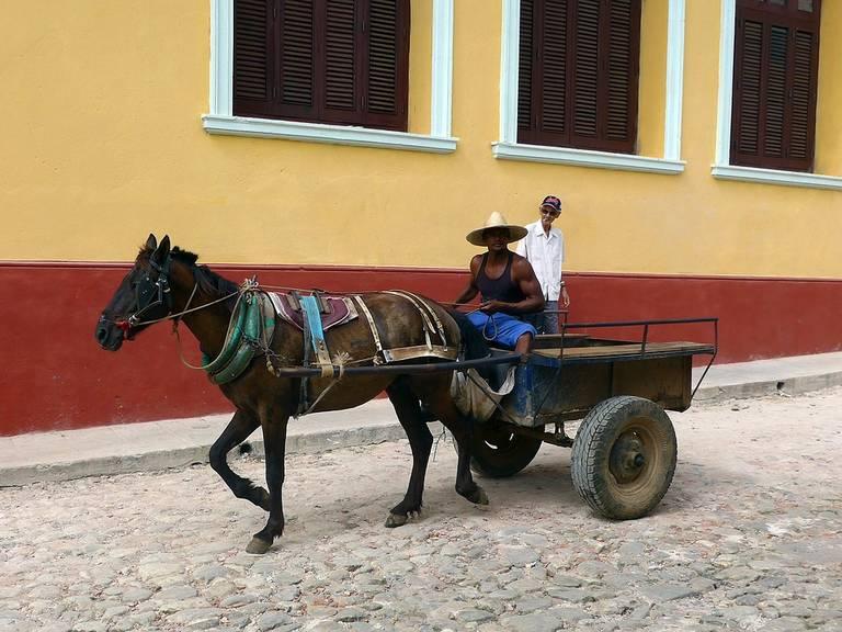 Paard en wagen in Trinidad