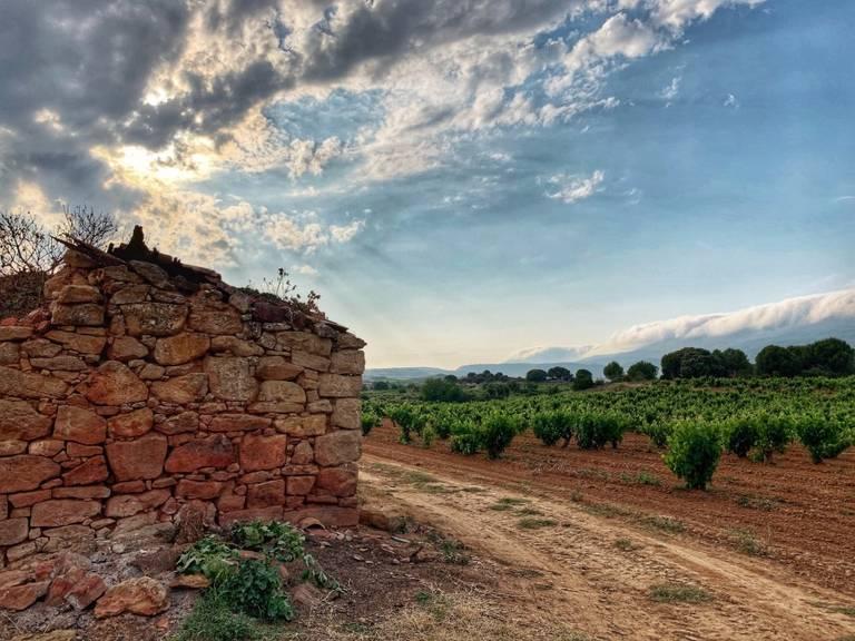 La Rioja streek