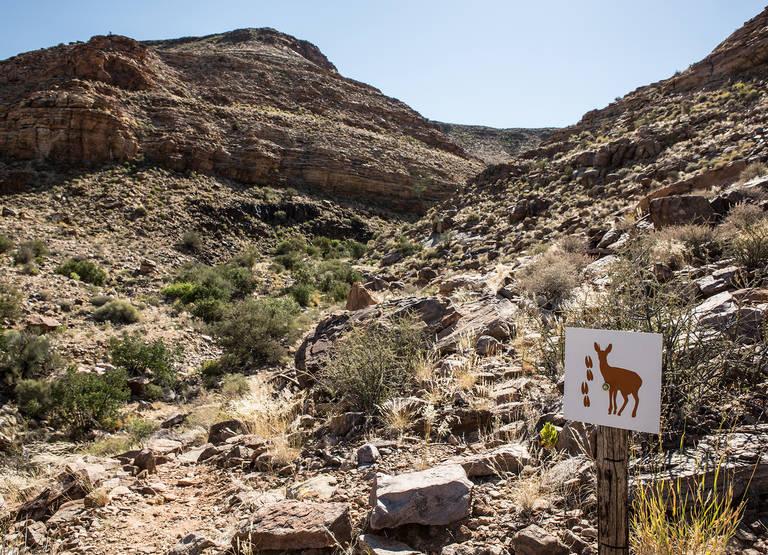 Wandelpad bij Fish River Canyon in Namibie