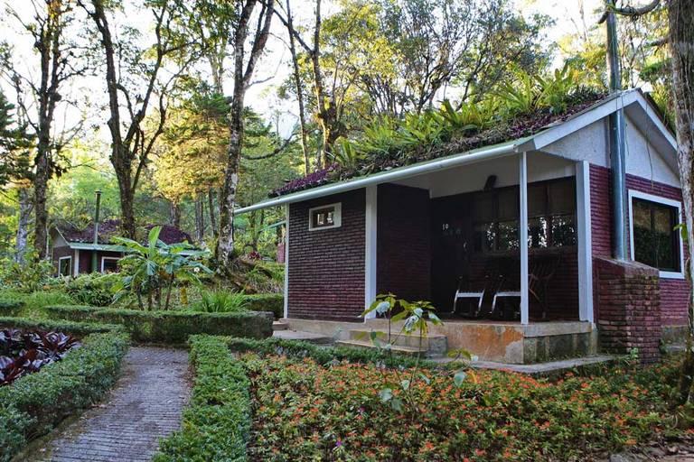 Selva Negra Ecolodge, Matagalpa