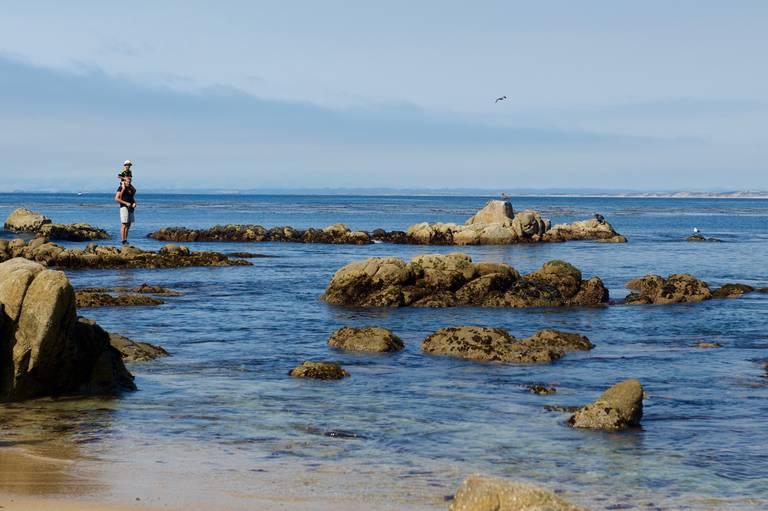 Kust bij Monterey