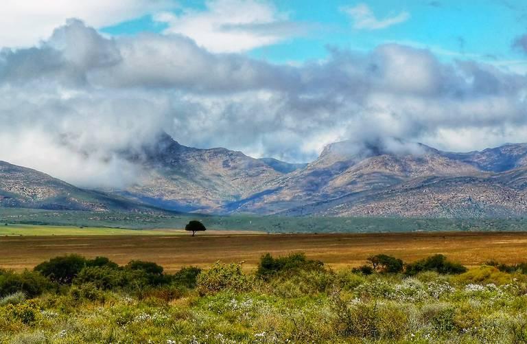Landschap in de Karoo