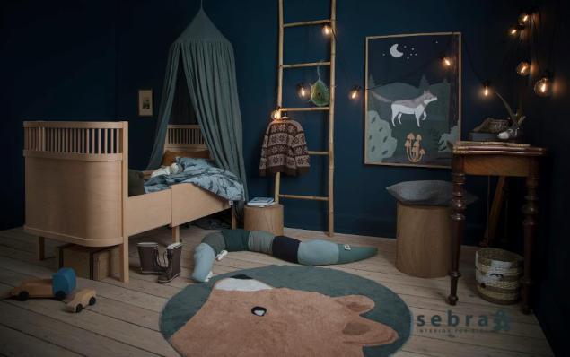 Sebra New Collection