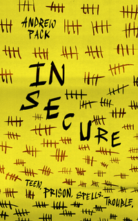 Cover of In Secure