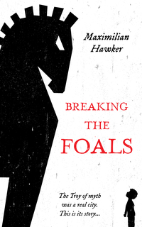 Cover of Breaking The Foals